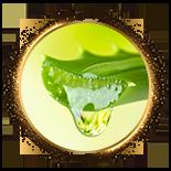 水解膠原蛋白-庫拉索蘆薈葉汁